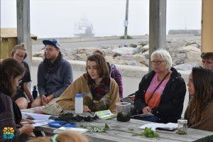 Atelier sur la cueillette de bord de mer
